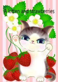 The kitten likes Strawberries2