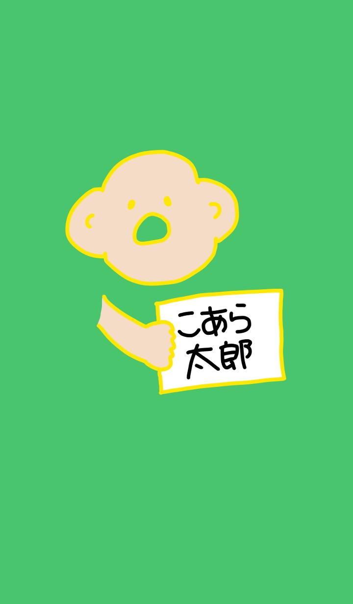 Koara Taro Deluxe BY 2