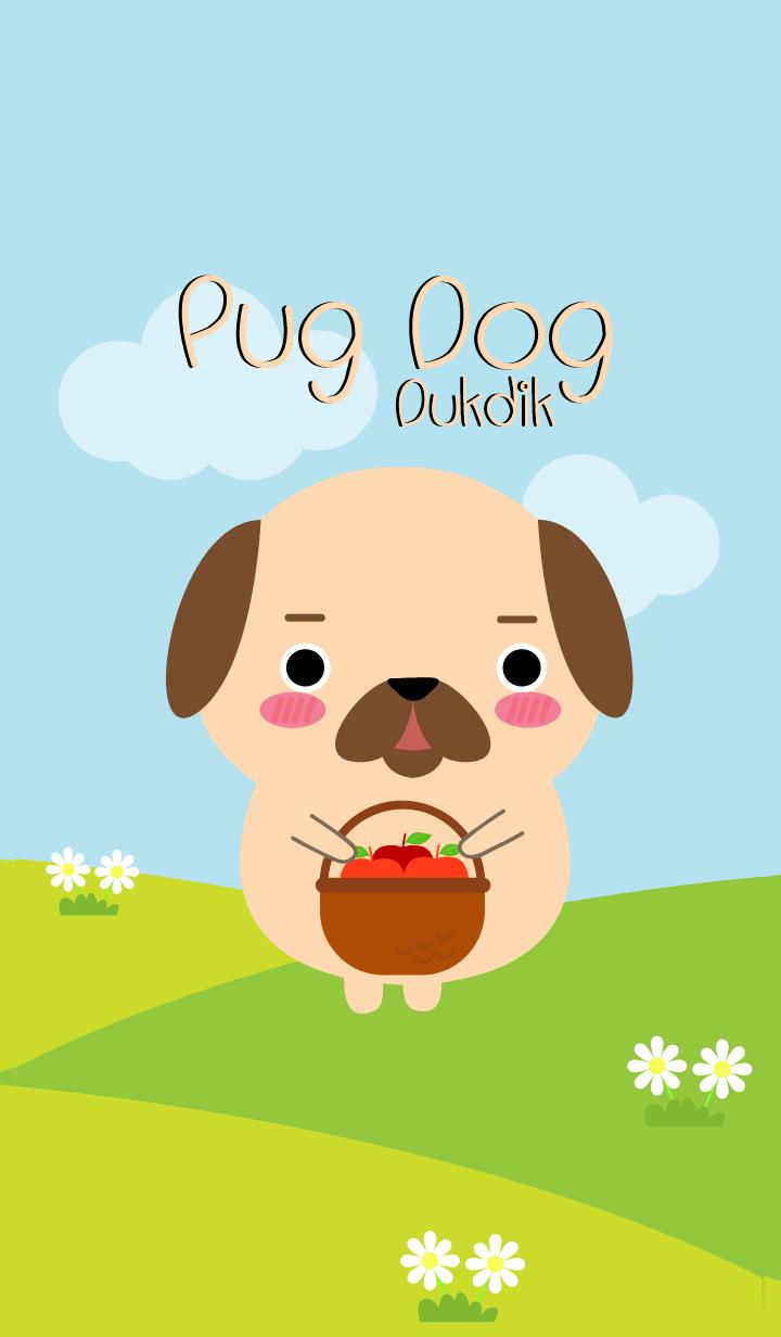 Lovely Pug Dog Duk Dik Theme (jp)
