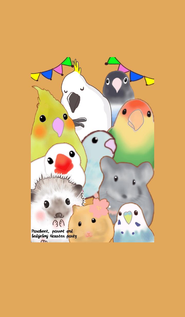 Parakeet parrot hedgehog Hamster party
