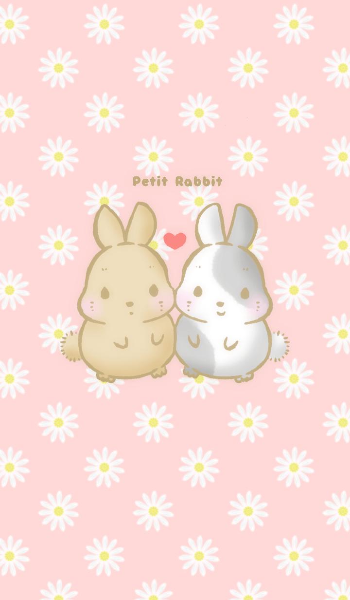 *Petit Rabbit*