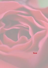 Rose Theme ver.Japan 44