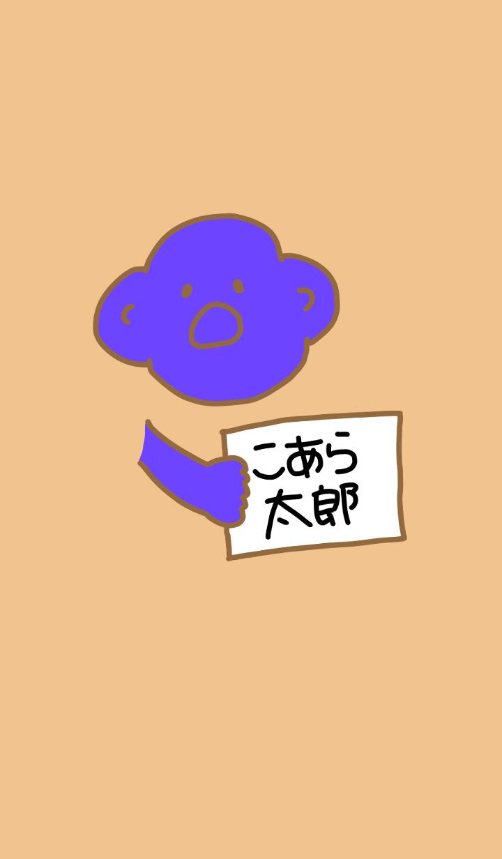Koara Taro Black x Brown 3