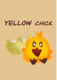 Yellow chick.