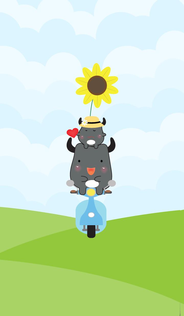 Cute little buffalo theme