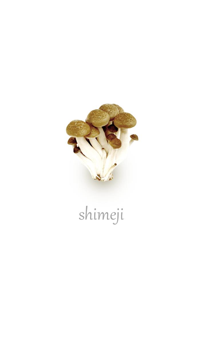 Cute shimeji mushroom