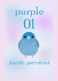 太平洋鸚鵡/紫色01