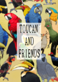 TOUCAN AND FRIENDS