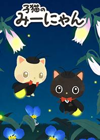 Miinyan of the kitten -Firefly-