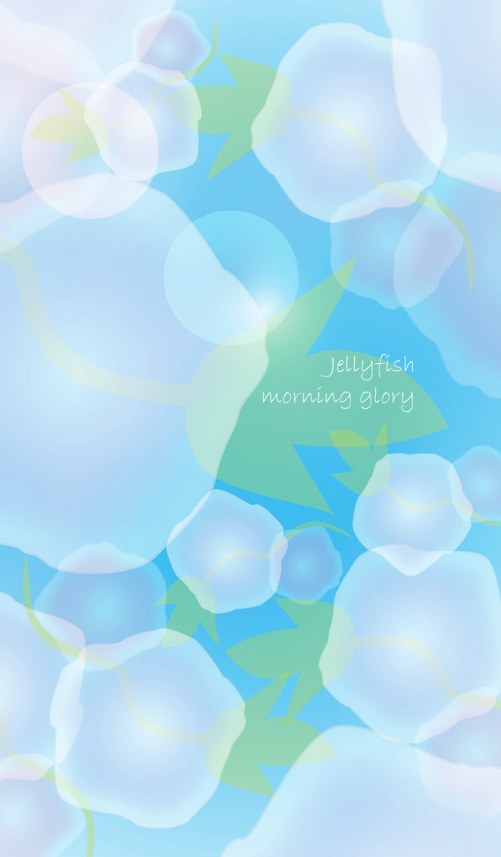 Jellyfish morning glory