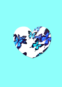 The most beautiful blue heart