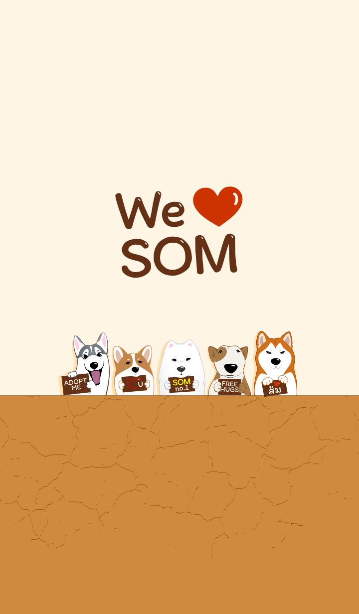 We love SOM