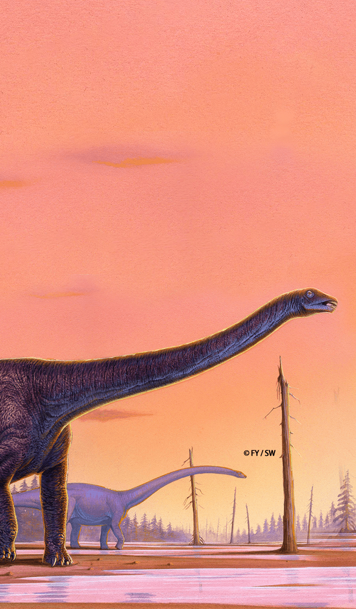 Dinosaur Sauropod