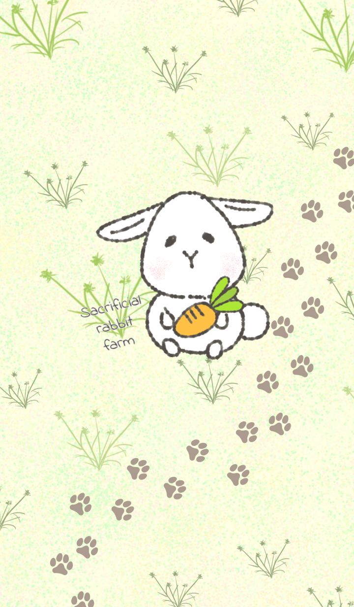 Sacrifice rabbit farm E