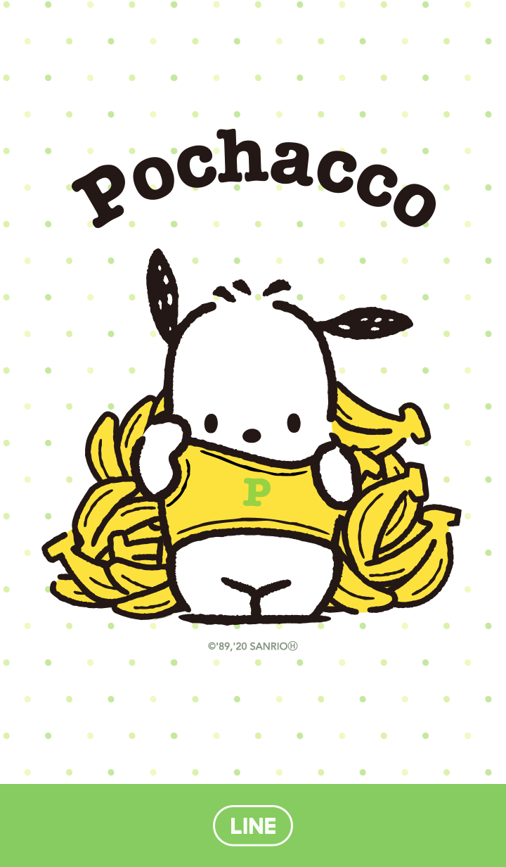 Pochacco: Hide-and-Seek