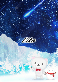 Eiko Polar bear winter night sky