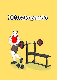 Muscle panda !