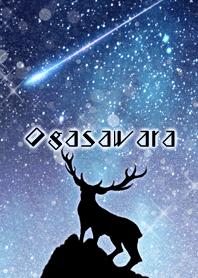 Ogasawara Reindeer and starry sky