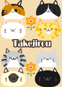 Takejirou Scandinavian cute cat