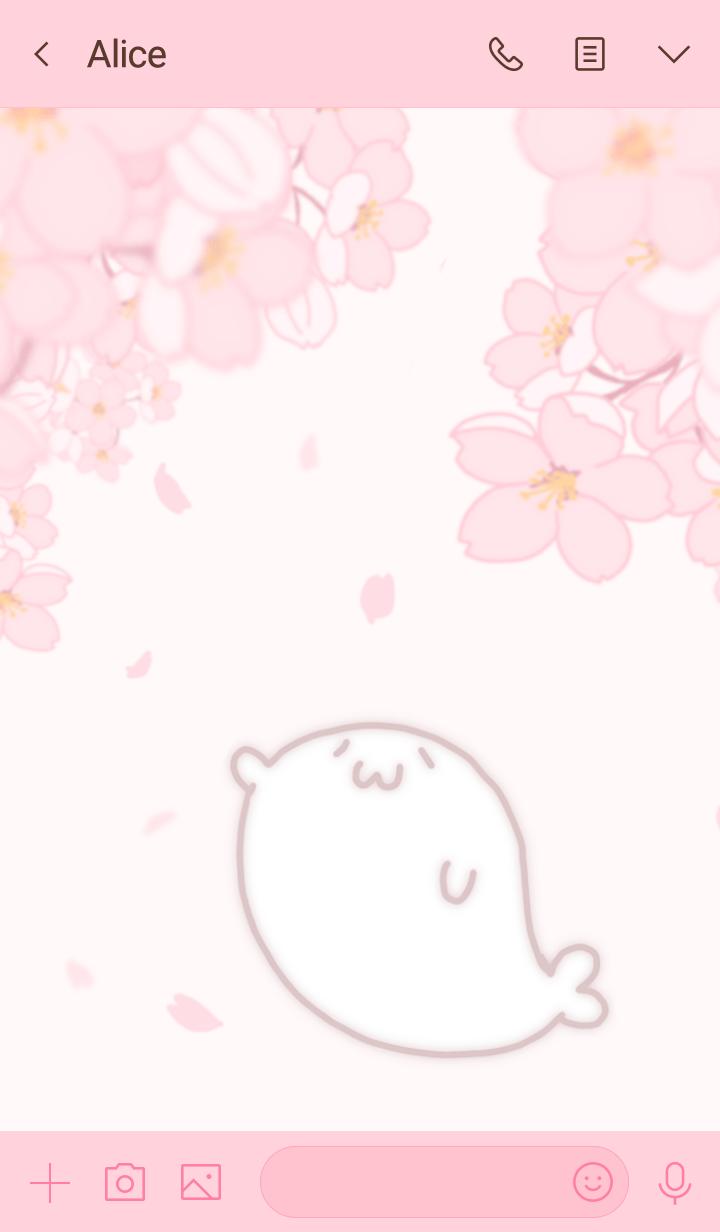 azarashisan-sakura