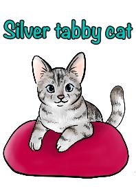 Silver tabby cat theme!