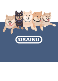 SIBAINU HU