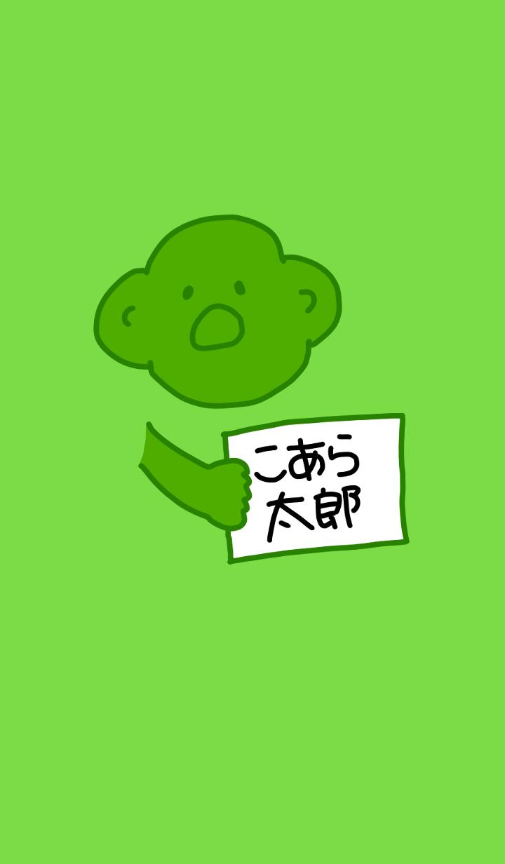 Koara Taro Black x Green 6