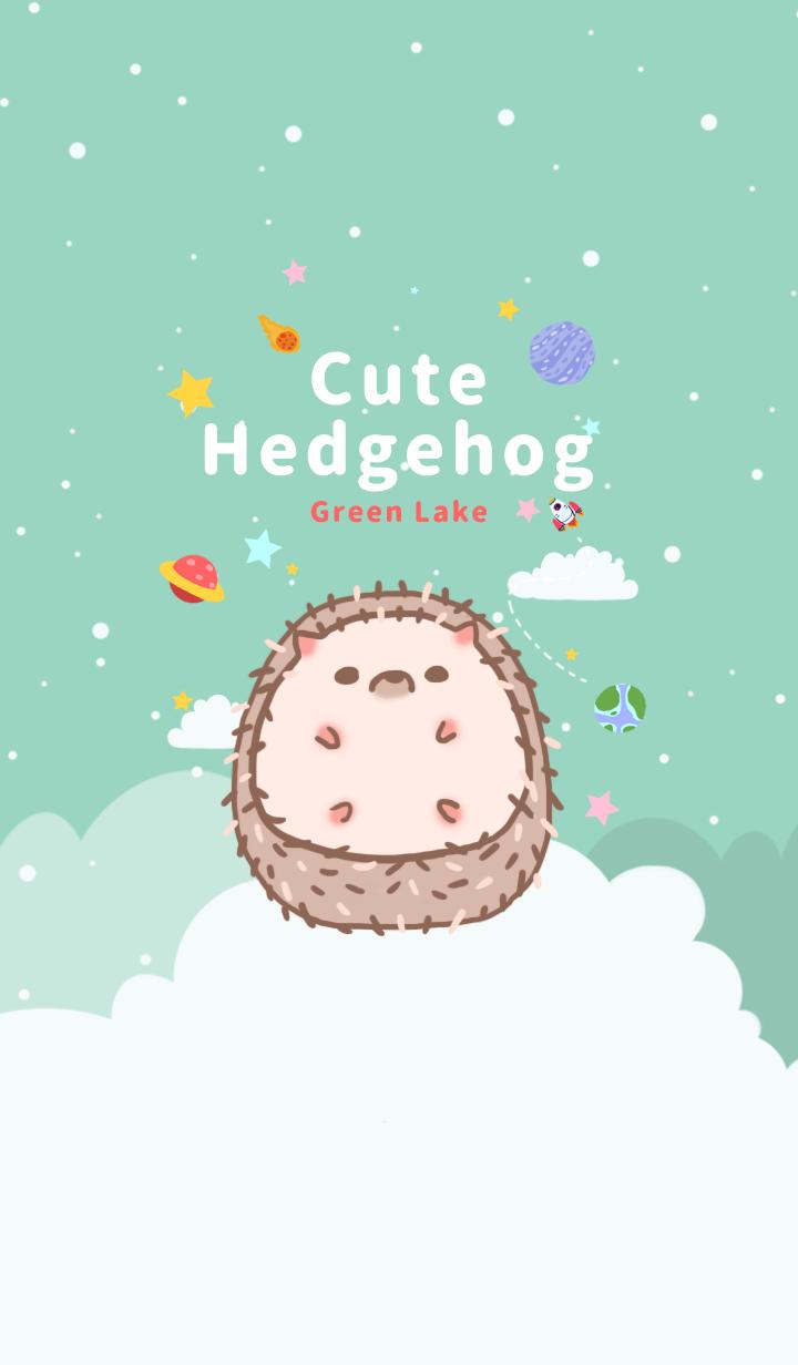 misty cat-Cute Hedgehog Green Lake