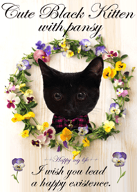 Cute Black Kitten with pansy