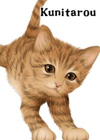Kunitarou Cute Tiger cat ki...