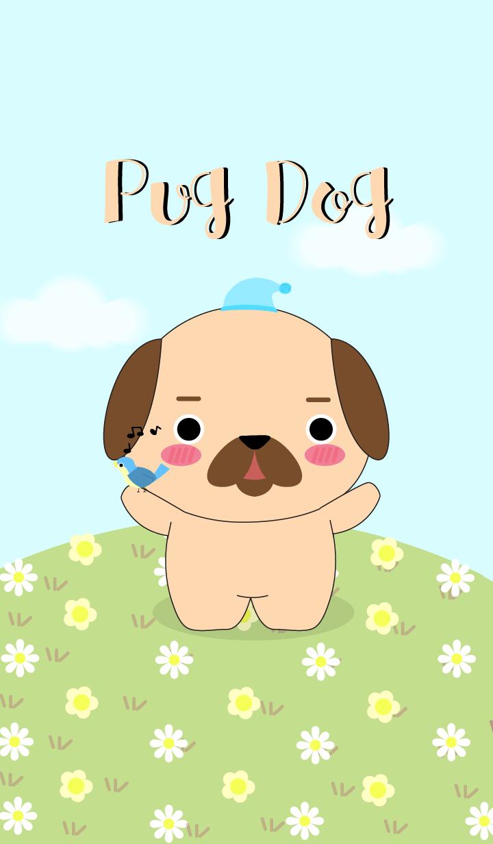 Love Cute Pug Dog Theme (jp)
