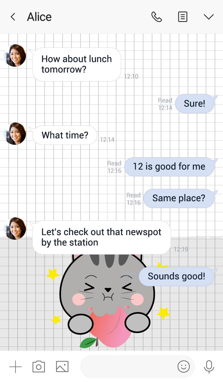 Minamal Grey Cat 2