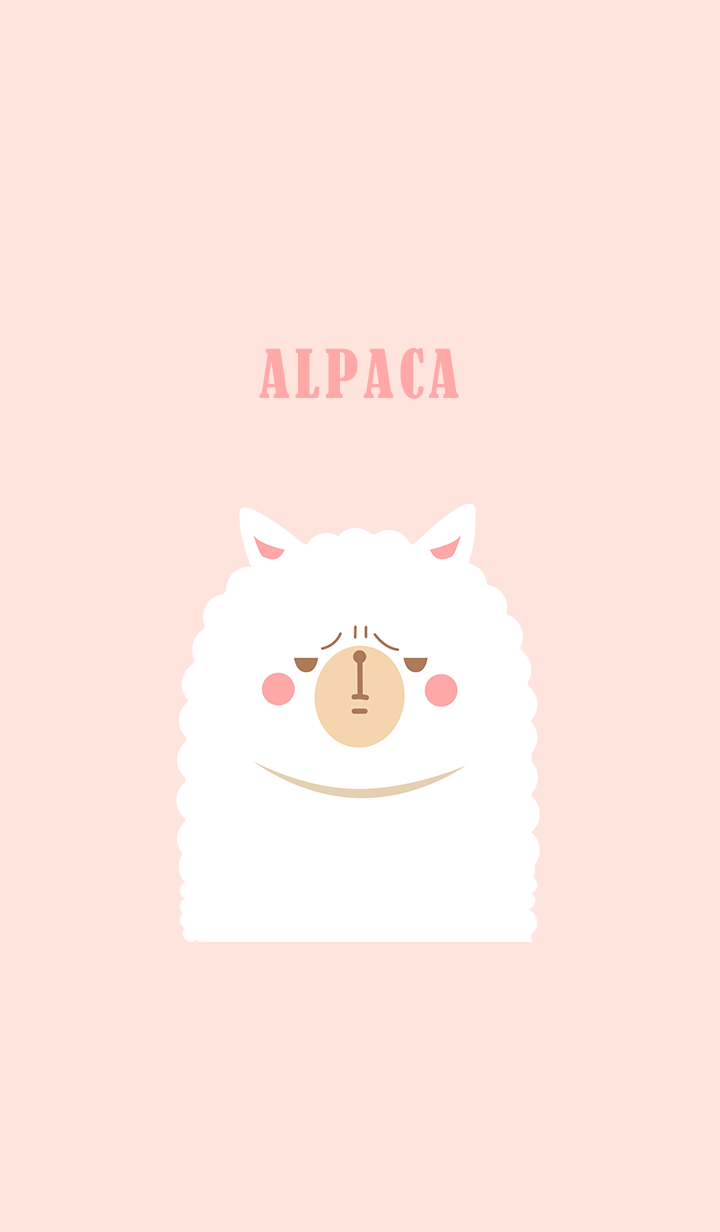 misty cat-alpaca pink and white