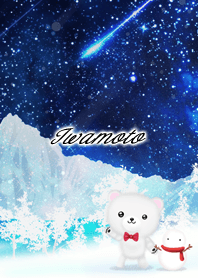 Iwamoto Polar bear winter night sky