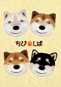 Tibi Shiba 2(DOG)