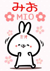 Miotyan rabbit Theme!