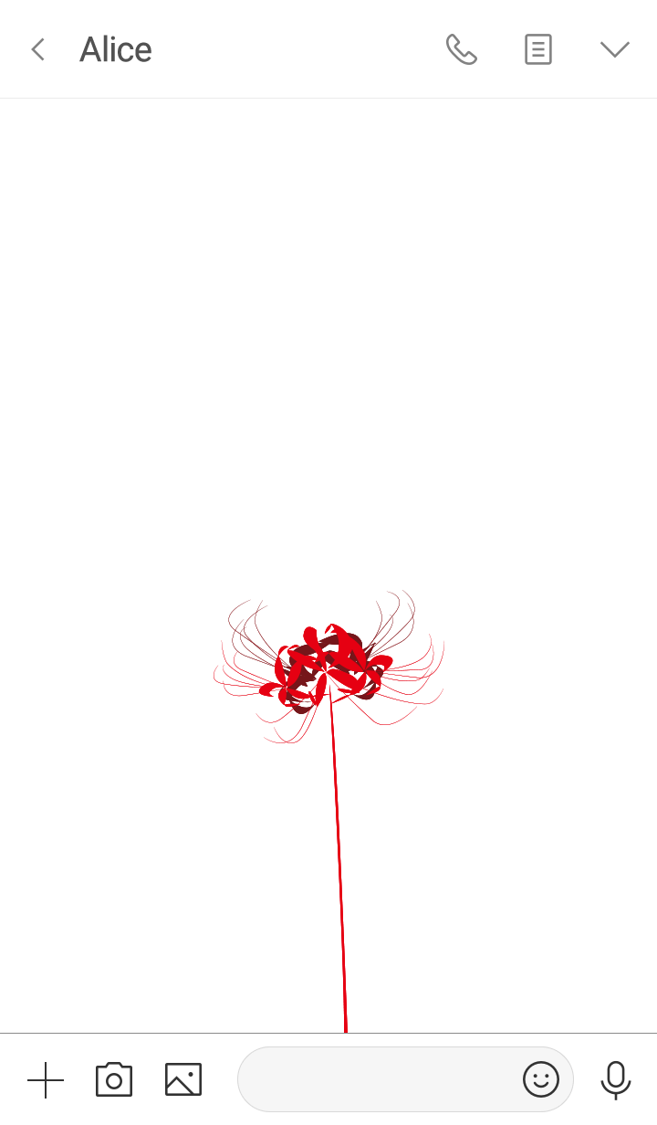 Lycoris red Background white