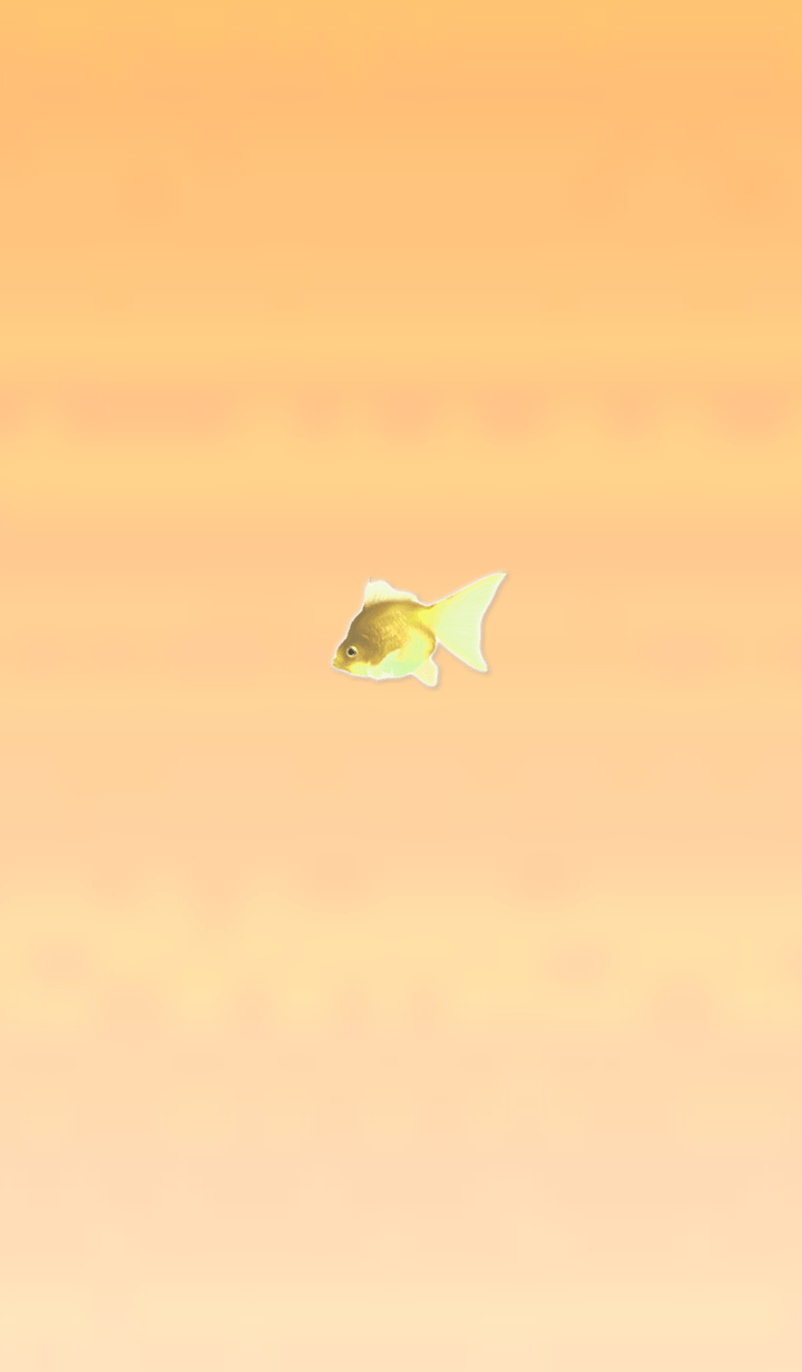 Lucky Goldfish Simple 12
