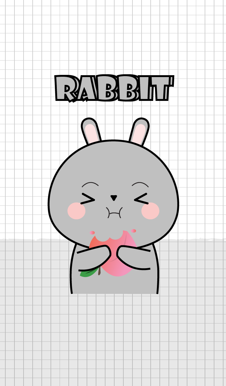 Minamal Grey Rabbit 2