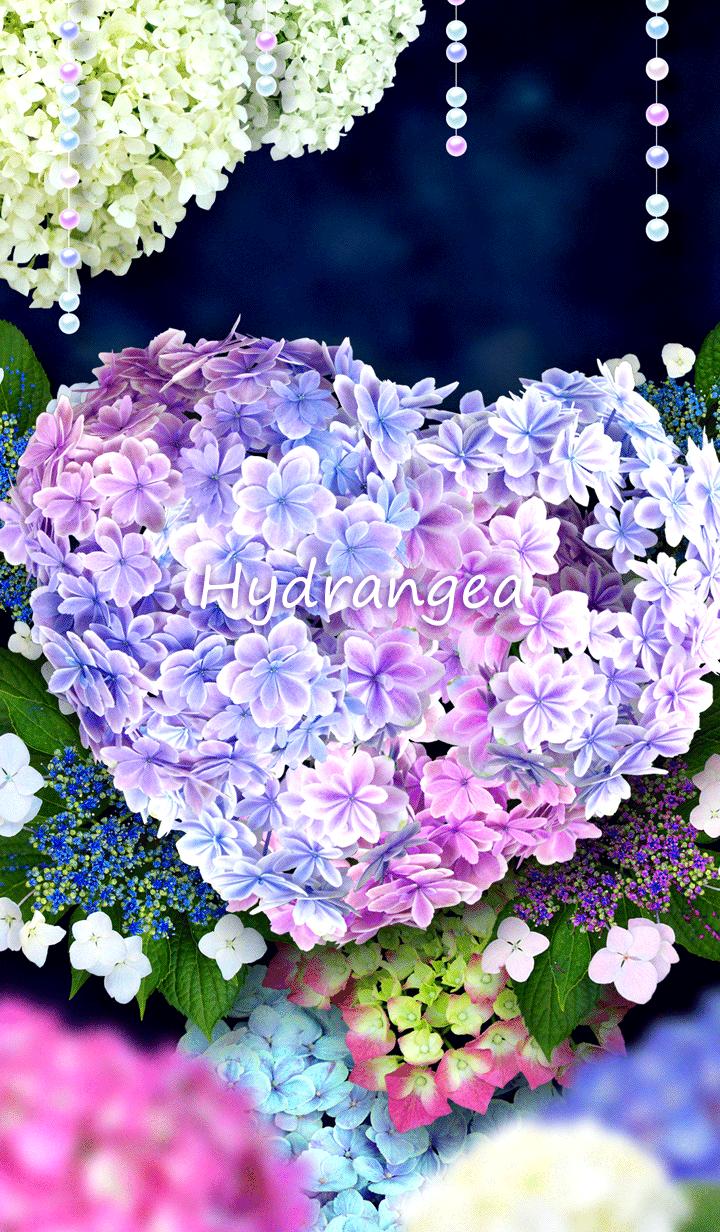 * Hydrangea *