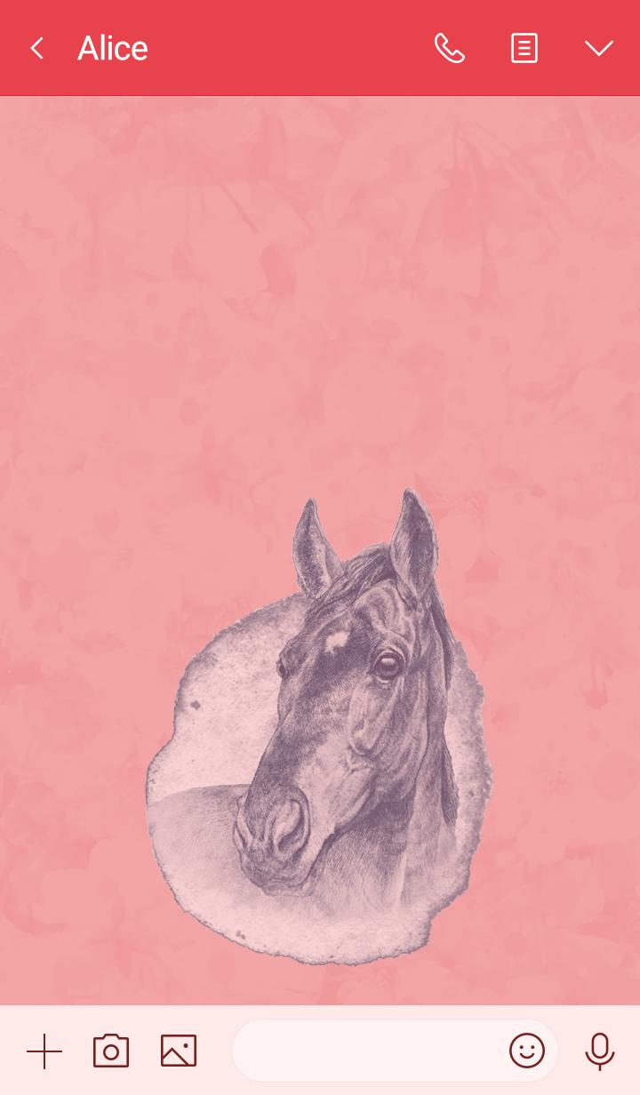 Beautiful Horse5