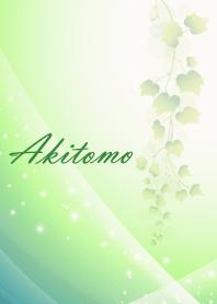 No.0060Akitomo Beautiful Lucky Theme