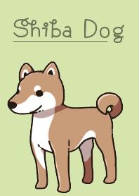 每天和日本狗在一起