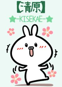 Kiyohara 2 name usagi Green