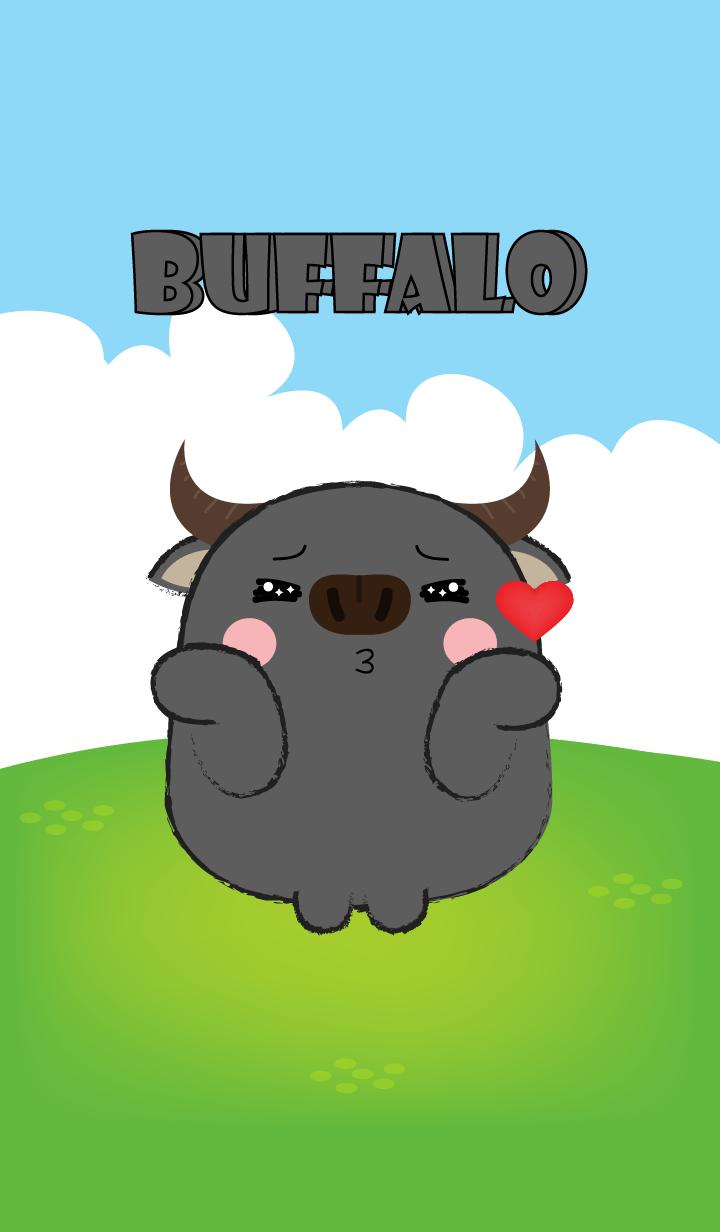Love You Buffalo