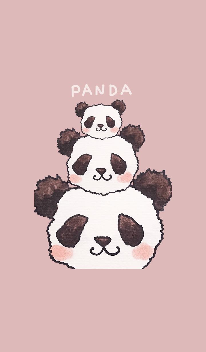 A family of three pandas.