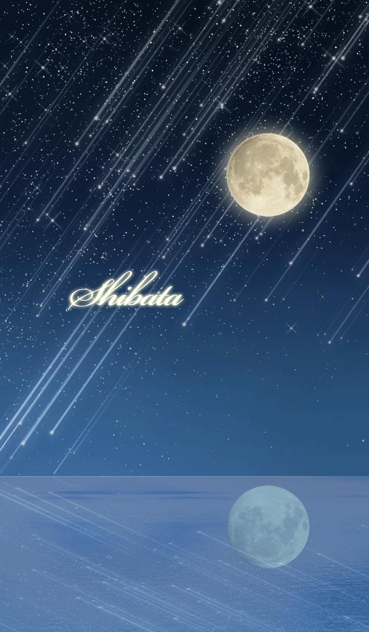 Shibata Moon & meteor shower