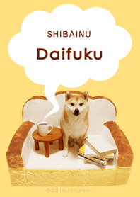 Everyday fluffy! Shiba inu ...
