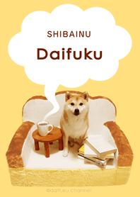 Everyday fluffy! Shiba inu Daifuku