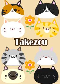 Takezou Scandinavian cute cat